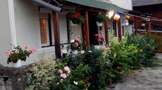 Casa Ionela Petreuș